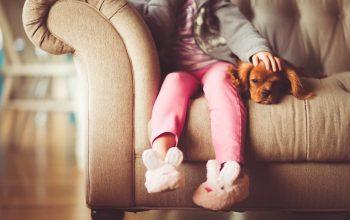 Skaffa hund och få hälsofördelar på köpet